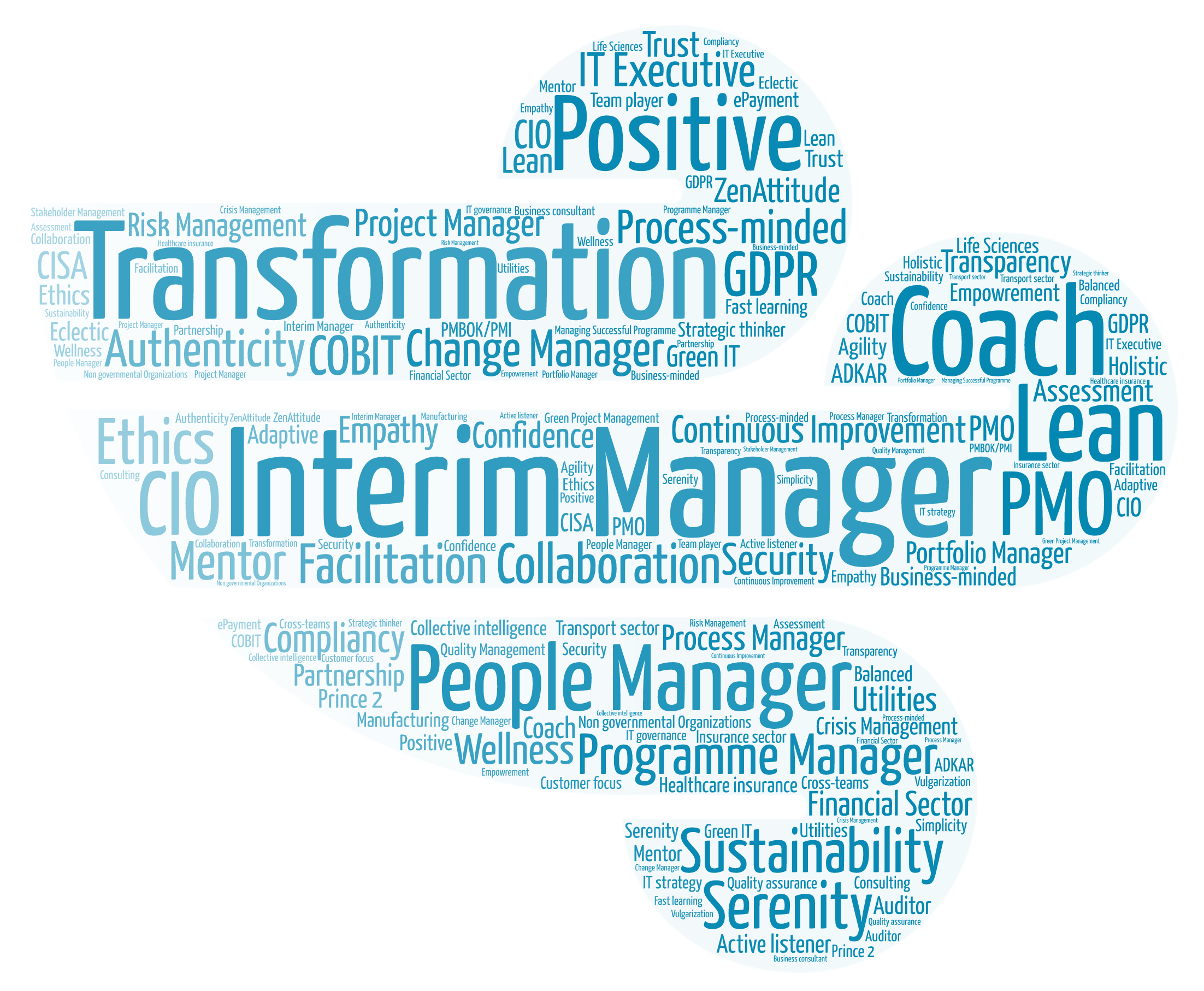 Laurent janssens resume adaptativefast operational programme word cloud main skills personality 1betcityfo Images